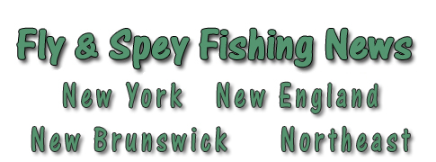 Northeast Fly Fishing Guide News Letters